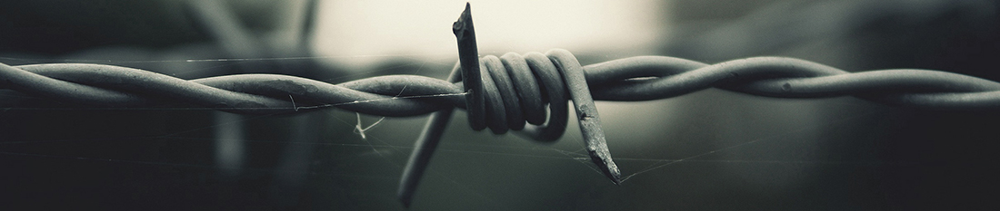 barbedwire4